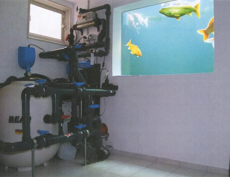 Filter technik for Fischhaltung im teich